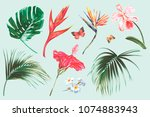 tropical flowers  palm leaves ... | Shutterstock .eps vector #1074883943