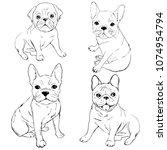 french bulldog. dog on a white ... | Shutterstock . vector #1074954794