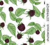 seamless pattern of hand drawn... | Shutterstock . vector #1074968429