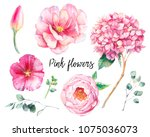 hand painted floral elements... | Shutterstock . vector #1075036073