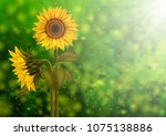 illustration of sunflowers and... | Shutterstock .eps vector #1075138886