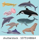 collection of sea animals ... | Shutterstock .eps vector #1075148864