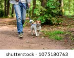Stock photo man and dog on loose leash hiking at forest by footpath 1075180763