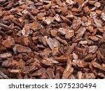 tree bark pieces natural... | Shutterstock . vector #1075230494