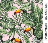 exotic tropical green jungle... | Shutterstock .eps vector #1075238138