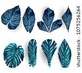 vector exotic tropical leaves ... | Shutterstock .eps vector #1075256264