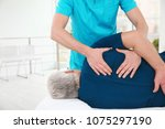 young physiotherapist working... | Shutterstock . vector #1075297190