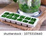 frozen cubes of herbs on a... | Shutterstock . vector #1075310660
