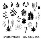 set of different leaves painted ... | Shutterstock .eps vector #1075339556