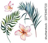 Tropical Exotic Floral Set....