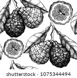 citrus seamless pattern.... | Shutterstock .eps vector #1075344494