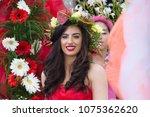 parade of madeira flower... | Shutterstock . vector #1075362620