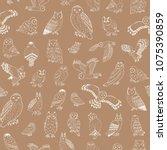 owls vector hand drawn... | Shutterstock .eps vector #1075390859