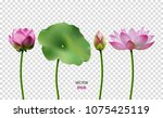 set of vector images of lotus ... | Shutterstock .eps vector #1075425119