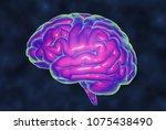 3d brain rendering temperature... | Shutterstock . vector #1075438490