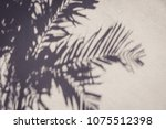 copy space of shadow palm leaf... | Shutterstock . vector #1075512398