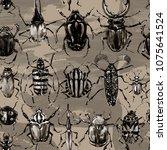 watercolor beetles seamless... | Shutterstock . vector #1075641524