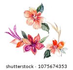 graceful flowers  the leaves... | Shutterstock . vector #1075674353
