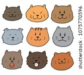 vector set of cat face | Shutterstock .eps vector #1075770596