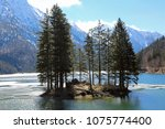 island with trees on the alpine ... | Shutterstock . vector #1075774400