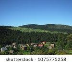 carpatian mountains summer... | Shutterstock . vector #1075775258