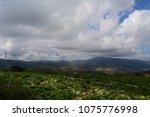 autumn mountain landscape. | Shutterstock . vector #1075776998