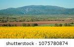 landscape of osogovo mountain... | Shutterstock . vector #1075780874