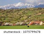 springtime landscape in... | Shutterstock . vector #1075799678
