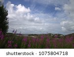 landscape of clouds and flowers | Shutterstock . vector #1075804718