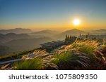 landscape nature beautiful... | Shutterstock . vector #1075809350