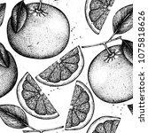 citrus seamless pattern. pomelo ... | Shutterstock .eps vector #1075818626