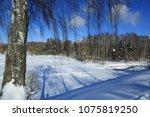 winter landscape russia moscow... | Shutterstock . vector #1075819250