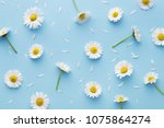 Daisy pattern. flat lay spring...