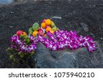 offering to pele the fire...   Shutterstock . vector #1075940210