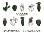 vector illustration. cactus pen ... | Shutterstock .eps vector #1076063726