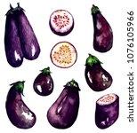 set of aubergines   eggplants . ... | Shutterstock . vector #1076105966