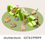 purebred cats of various breeds ... | Shutterstock .eps vector #1076199899