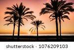 sun rising between palm trees... | Shutterstock . vector #1076209103