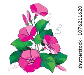 vector bouquet with outline... | Shutterstock .eps vector #1076211620
