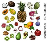 hand drawn fruits and berries...   Shutterstock .eps vector #1076236880