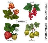 set of hand drawn berries...   Shutterstock .eps vector #1076290868