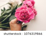 hand holding lovely pink peony...   Shutterstock . vector #1076319866