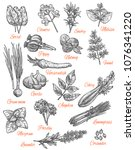 herbs and spices sketch icons.... | Shutterstock .eps vector #1076341220