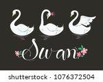 beautiful princess swan... | Shutterstock .eps vector #1076372504