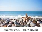 Starfish On The Beach Background