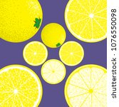 vector template with slice of... | Shutterstock .eps vector #1076550098