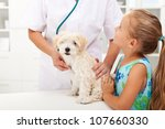 Little girl and her fluffy dog at the veterinary doctor office - stock photo