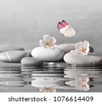 Flower And Stone Zen Spa On...