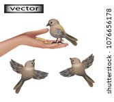 vector. feed birds on the... | Shutterstock .eps vector #1076656178