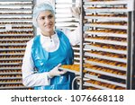 fish seafood factory   Shutterstock . vector #1076668118
